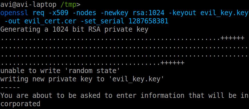 Spoofing the TeamViewer certificate